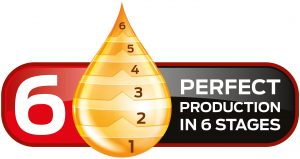 Zade Perfect Production In 6 Stages